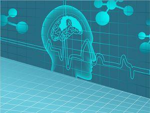 Otwarcie Laboratorium Neuronauki Języka na UAM