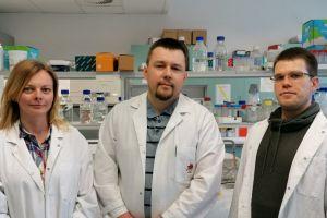 Koronawirus. Eksperci UAM o wirusie