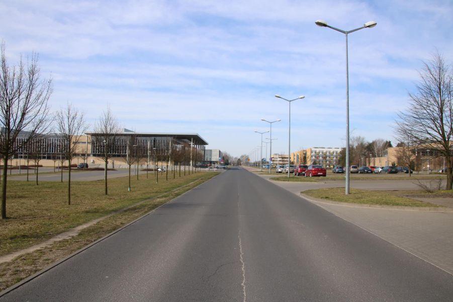 Morasko