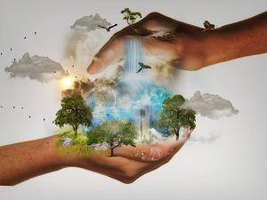 Tylko wspólnie możemy pomóc Ziemi - naukowcy z UAM łączą siły na rzecz klimatu