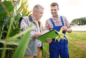 Prawne aspekty działalności spółdzielni w sektorze rolno-spożywczym