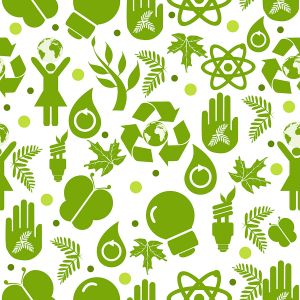 Eko to nie zawsze ekologia