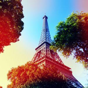 Stypendia do Francji