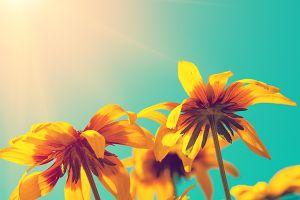 Urodziny Ogrodu Botanicznego UAM