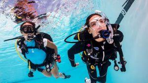 Pilotażowe warsztaty z nurkowania dla Studentów UAM z niepełnosprawnościami