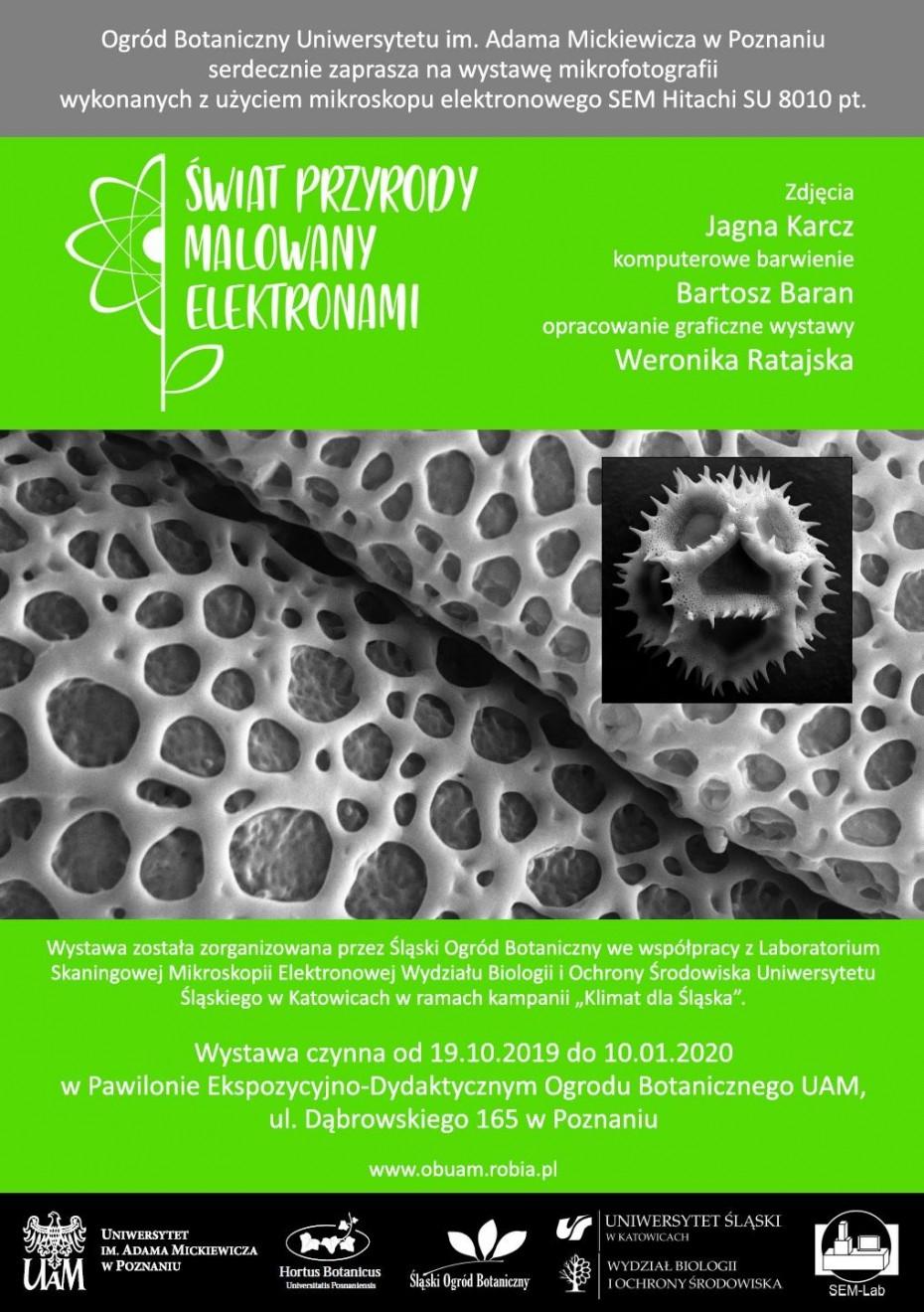 plakat wystawy mikrofotografii