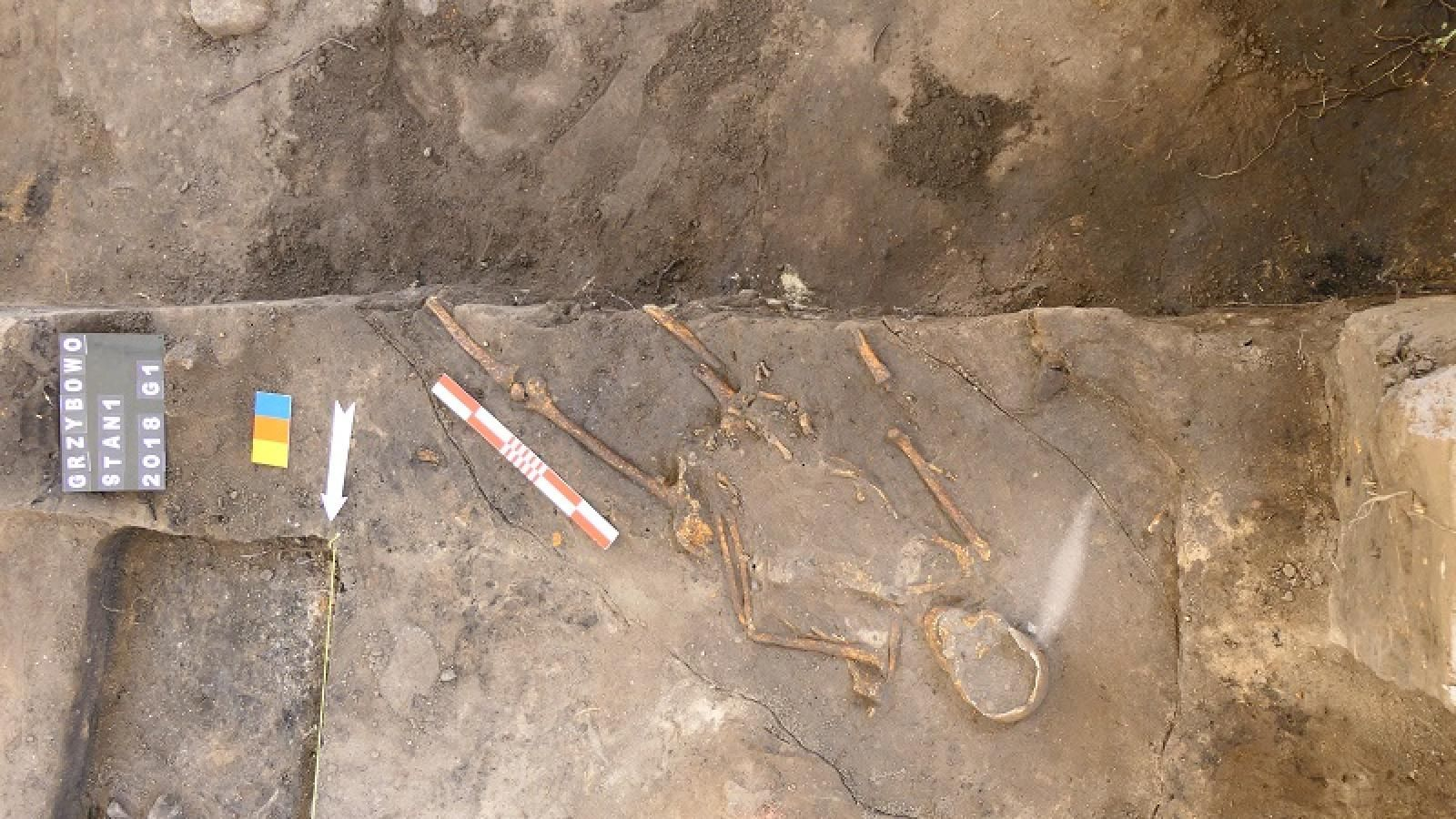 Odkrycie archeologów w Grzybowie