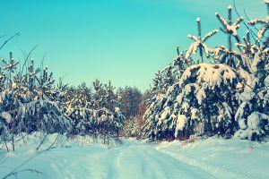 Wypoczynek świąteczno-zimowy w ośrodkach UAM