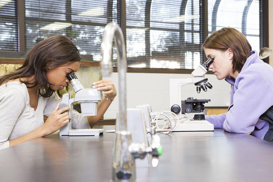 studenci w laboratorium