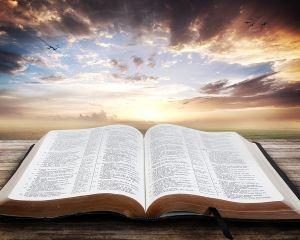 Nieznajomość Pisma Świętego jest nieznajomością Chrystusa – aktualność przesłania św. Hieronima dla Kościoła i społeczeństwa