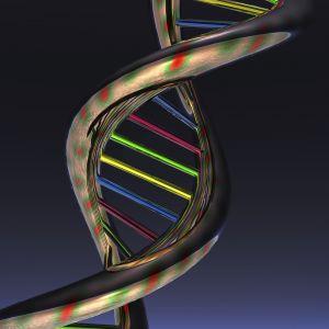Dr Anna Juras z UAM kieruje zespołem, który bada kopalne DNA. Czego chcą się dowiedzieć o przeszłości?